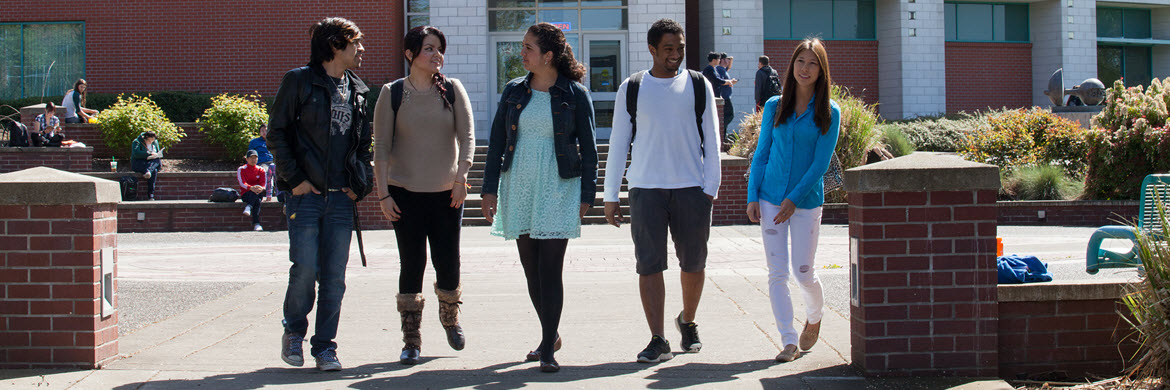 five students talking and walking outside the library building on a sunny day